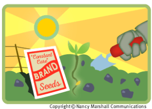 Planting seeds for brand building