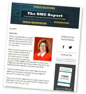 NMC Report example